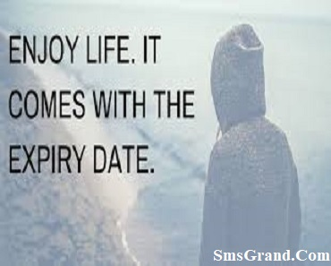 Enjoy Status In English Quotes About Enjoying Life And